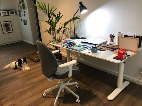 My workspace and my little assistant