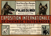 Poster International Dog Show 1938